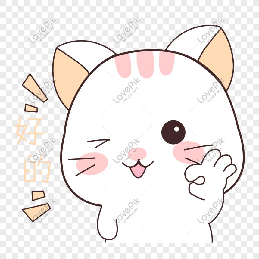 Unduh 99+  Gambar Kucing Ok Paling Lucu Gratis