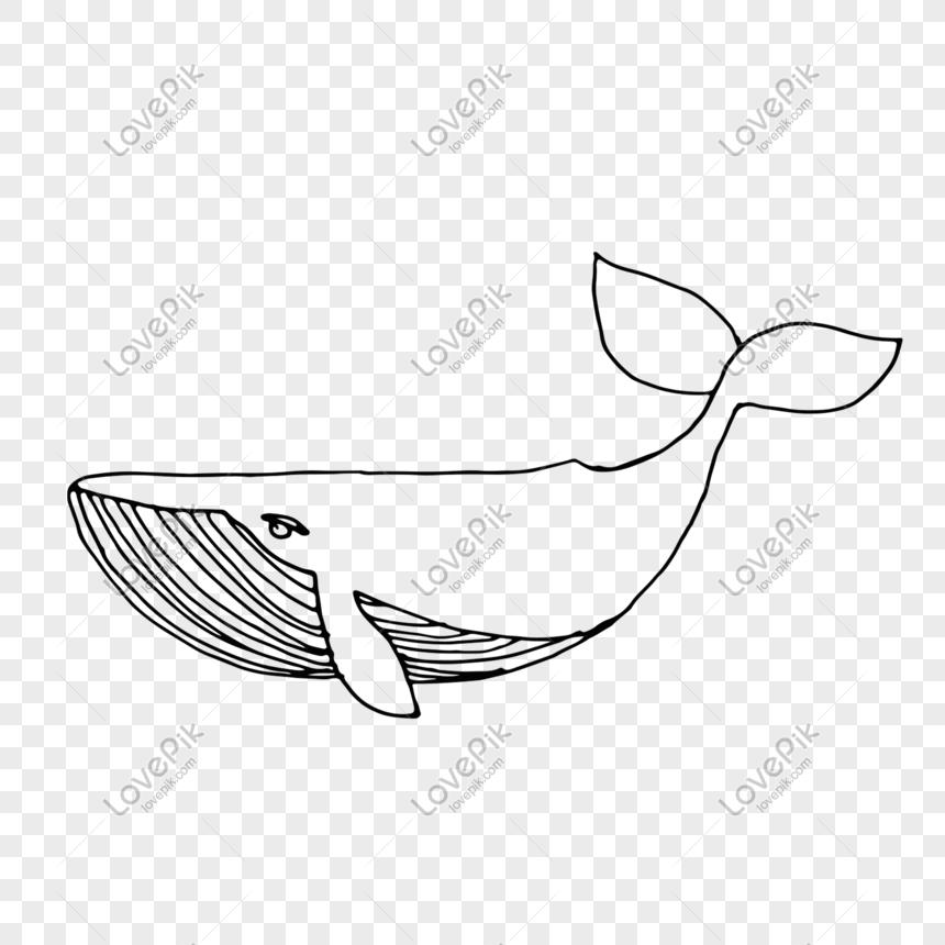 Bahan Hiasan Haiwan Laut Hitam Dan Putih Gambar Unduh Gratis Imej 610798227 Format Psd My Lovepik Com