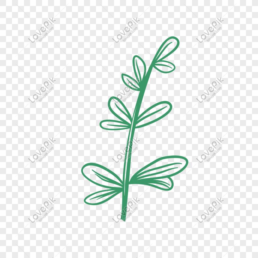 plant vector illustration png png image picture free download 610868612 lovepik com lovepik