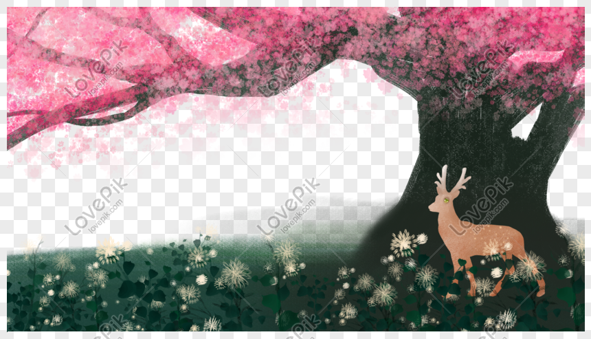 pink cherry blossom dream border png