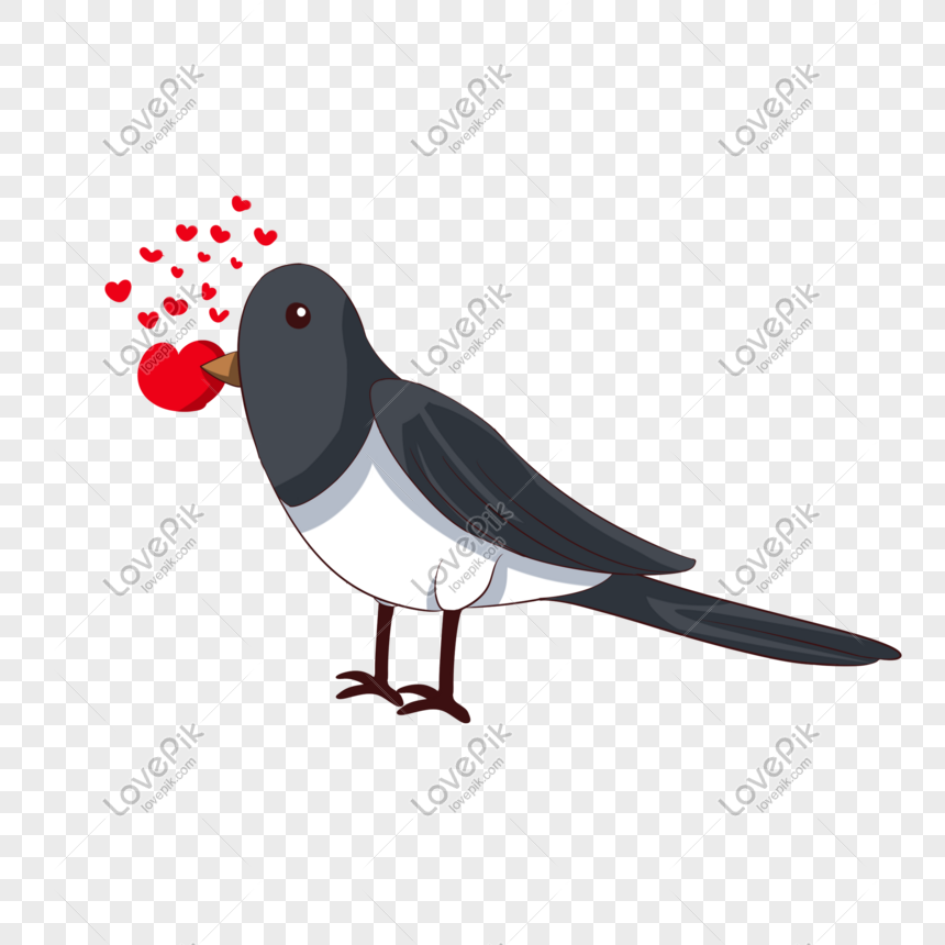 Vector hand drawn cartoon love birds png image_picture free