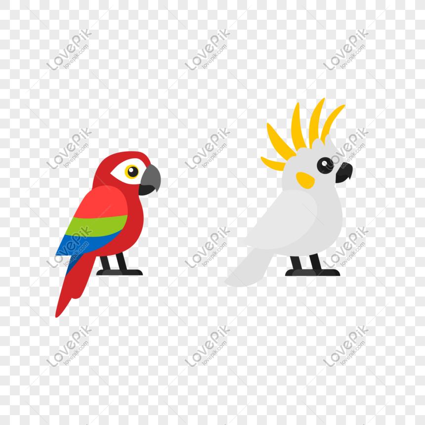 Ilustrasi Burung Beo Kartun Yang Indah Png Grafik Gambar Unduh Gratis Lovepik