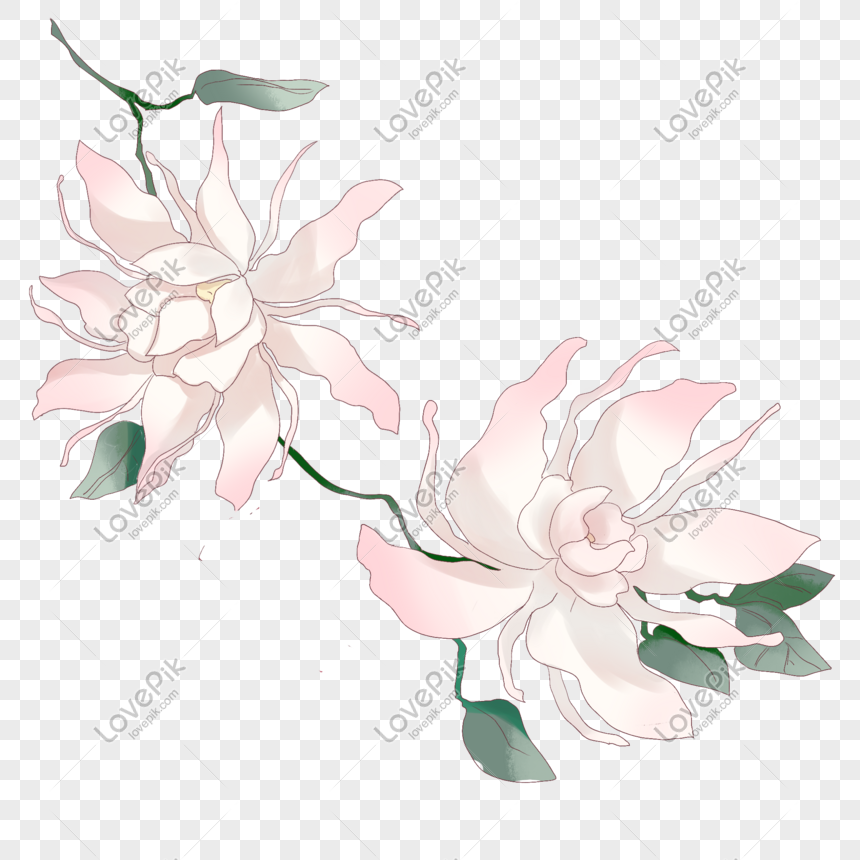 ancient style theme flower hand drawn illustration png