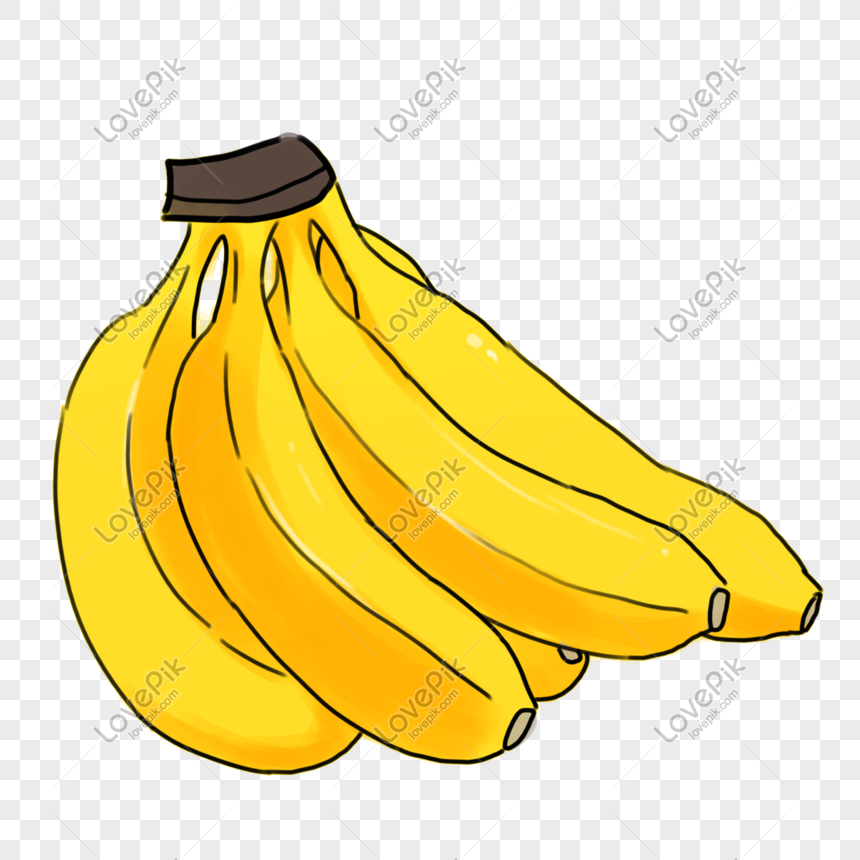 autumn crop fruit banana hand drawn illustration png image picture free download 611124219 lovepik com autumn crop fruit banana hand drawn