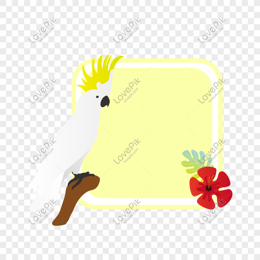 Bahan Vektor Dekorasi Perbatasan Burung Beo Putih Png Grafik Gambar Unduh Gratis Lovepik