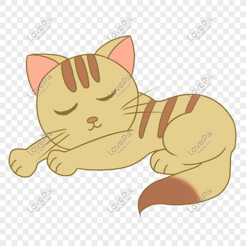 Gambar Kucing Tidur Kartun godean.web.id
