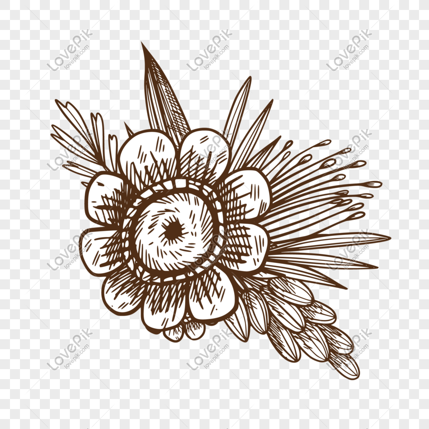 sketch flower vector illustration png png image picture free download 611186479 lovepik com sketch flower vector illustration png