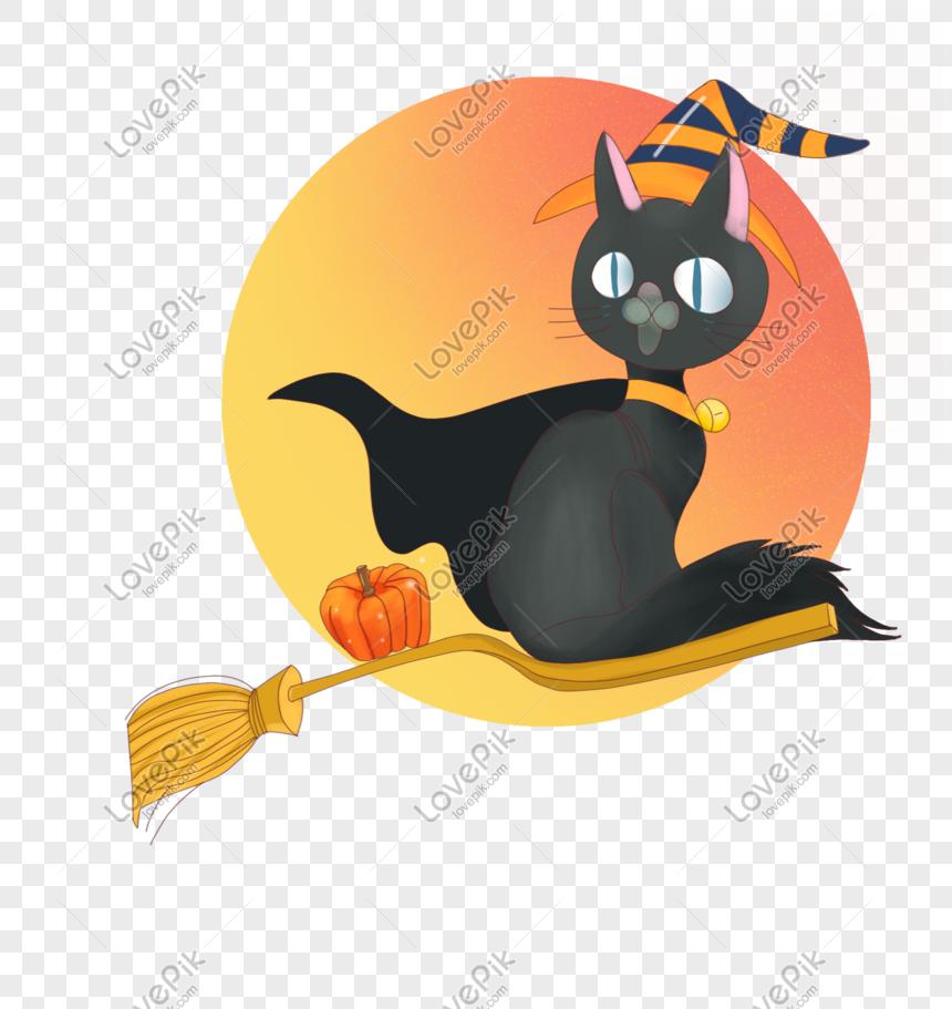 Gambar Kucing Rasulullah godean.web.id