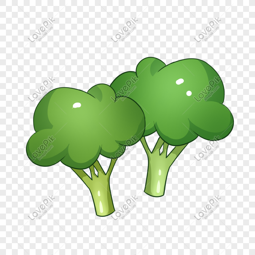 hand drawn catering vegetable broccoli vector illustration png image picture free download 611233575 lovepik com hand drawn catering vegetable broccoli