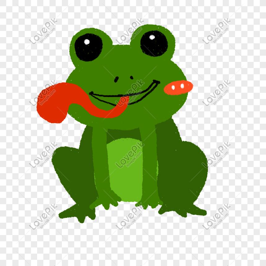 Kartun Dalam Air Ilustrasi Katak Haiwan Gambar Unduh