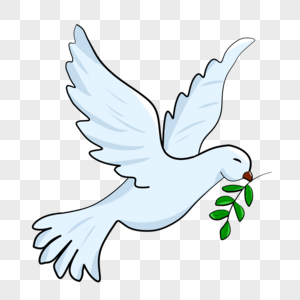 Flying pigeon birds png image_picture free download