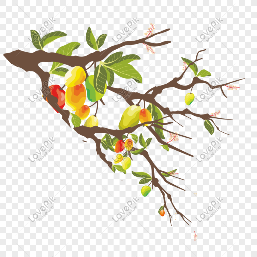 vector fruit tree branches illustration png image picture free download 611311773 lovepik com vector fruit tree branches illustration
