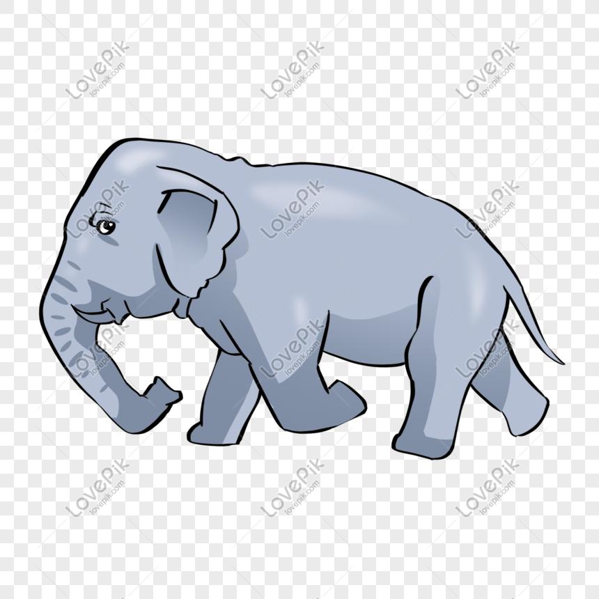 64 Gambar Ilustrasi Hewan Gajah Gratis Terbaru