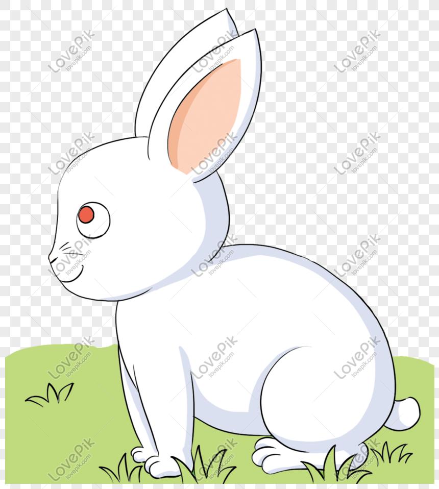 Kartun Kelinci Putih Imut Dengan Mata Merah Png Grafik Gambar Unduh Gratis Lovepik