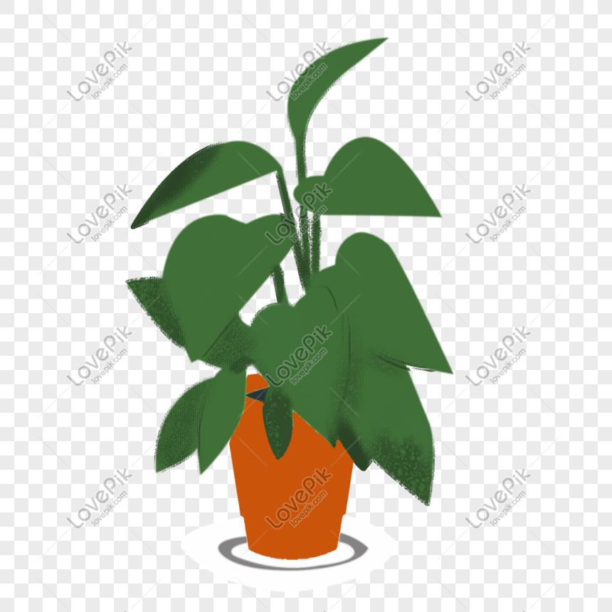 Ilustrasi Bunga Pasu Bunga Lukisan Tangan Gambar Unduh Gratis Imej 611376142 Format Psd My Lovepik Com
