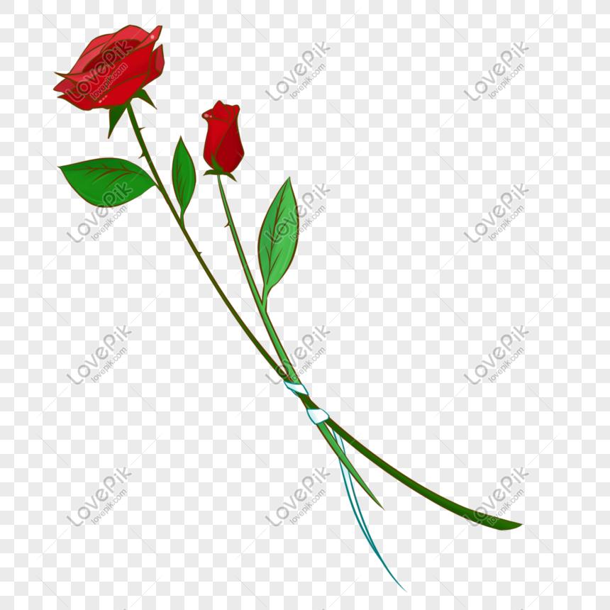 Kartun Ilustrasi Bunga Mawar Yang Digambar Tangan Png Grafik Gambar Unduh Gratis Lovepik