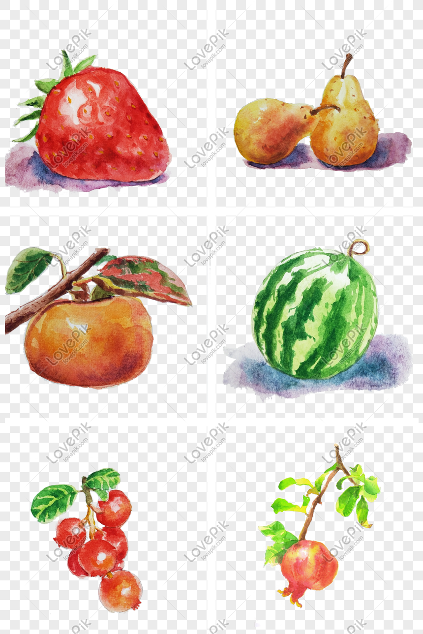Vẽ Tay Trái Cây Hoạt Hình Màu Nước Hình ảnh định Dạng Hình