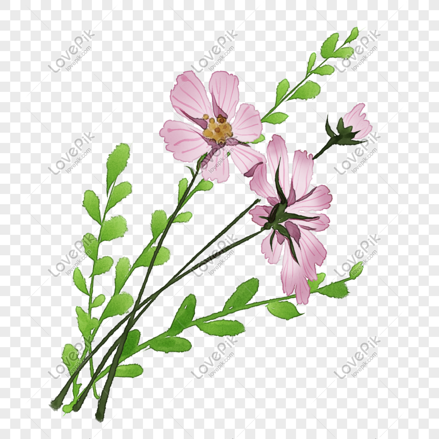 hand drawn pink purple floral illustration png