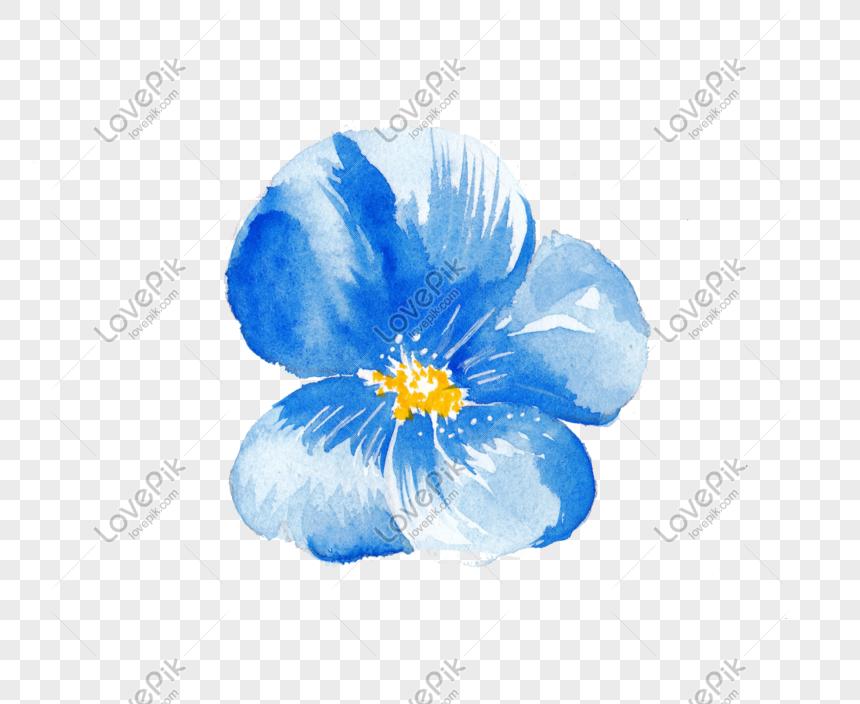 Cat Air Yang Dilukis Dengan Tangan Bunga Biru Png Png Grafik
