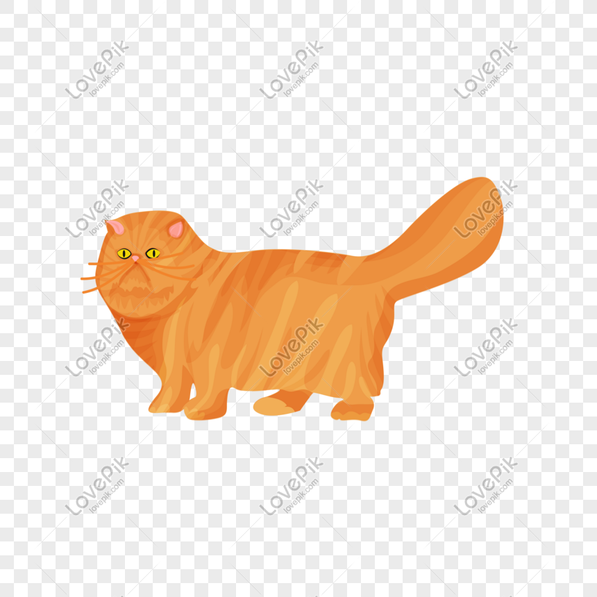 Busana Minimalis Kucing Peliharaan Lucu Kucing Persia Png Grafik Gambar Unduh Gratis Lovepik