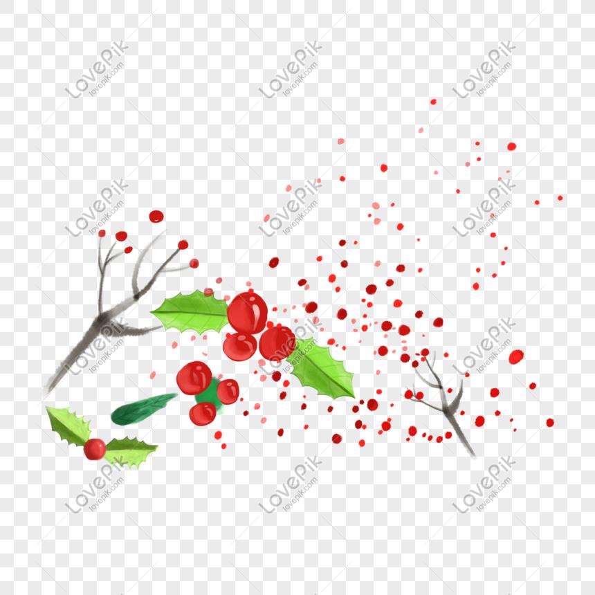 Dibujado A Mano Dibujos Animados Plantas Flores Y Frutas