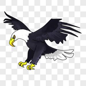 62 Koleksi Gambar Burung Elang Untuk Logo HD