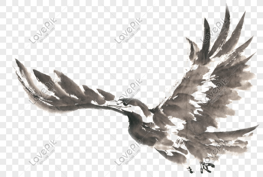 Flying eagle ink painting png free material png