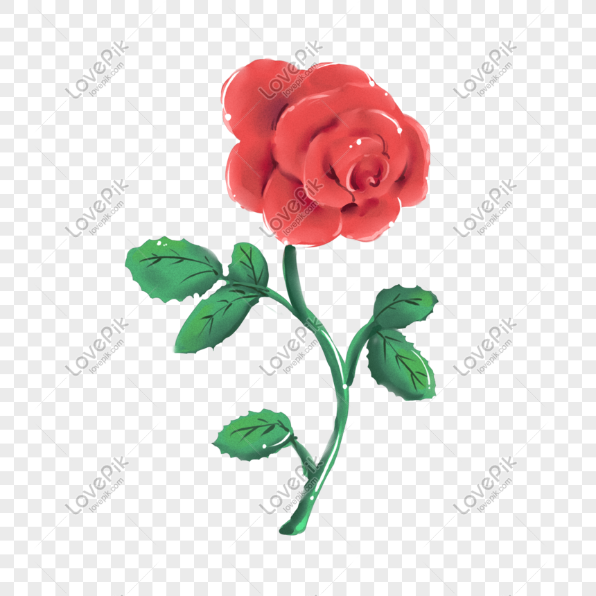 Hand Drawn Cartoon Rose Flower Png Image Picture Free Download
