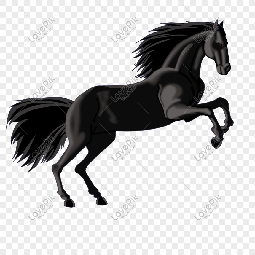 44 Gambar Ilustrasi Hewan Kuda Terbaik
