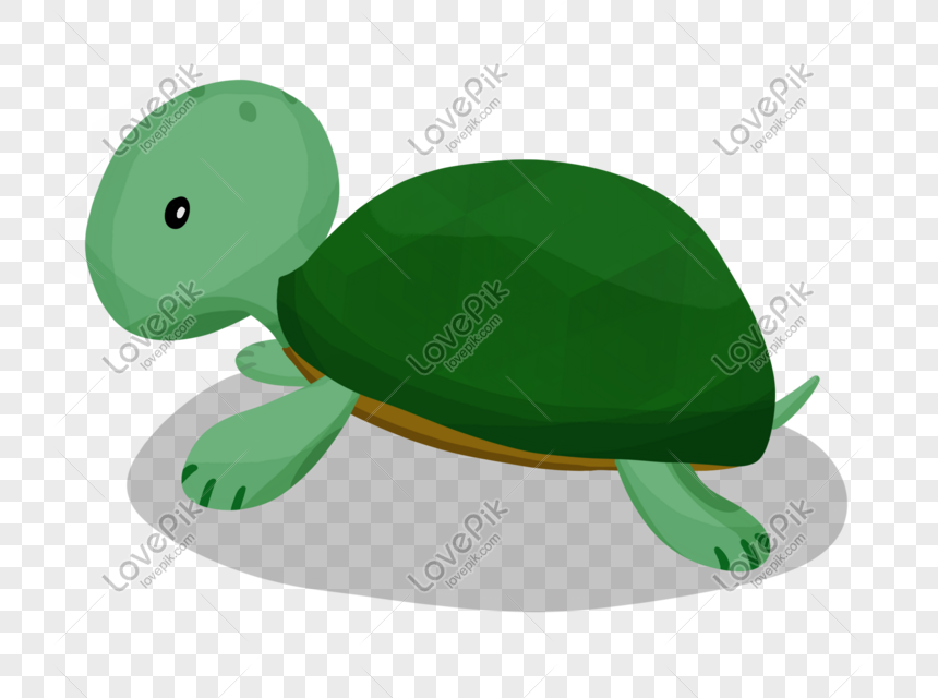 Hand Drawn Cute Pet Turtle Illustration Png Image Picture Free Download 611577315 Lovepik Com