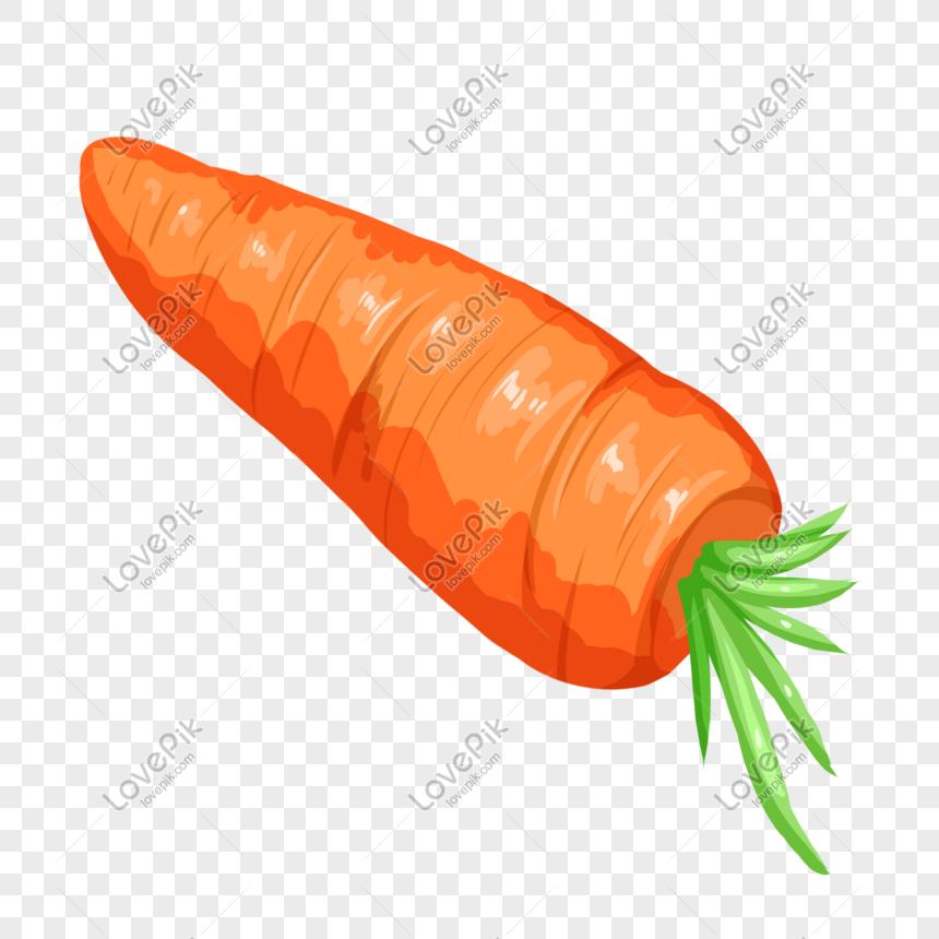 Gambar Lukisan Sayur Sayuran | Cikimm.com