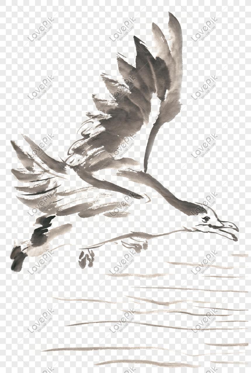 Terbang Tinta Burung Camar Lukisan Bahan Gratis PNG Grafik