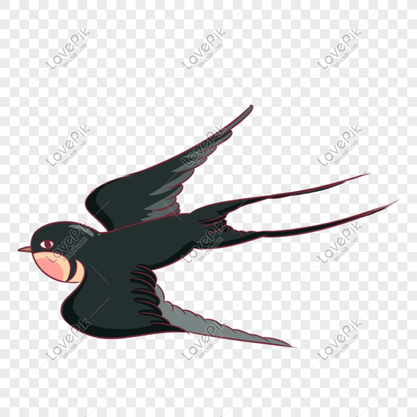 Paling Keren 10+ Gambar Kartun Burung Walet - Gani Gambar