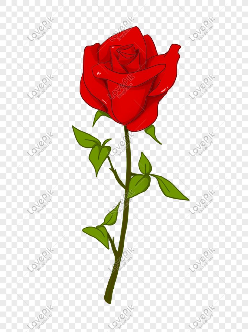 7000 Gambar Bunga Mawar Kartun Hd Terbaik Infobaru