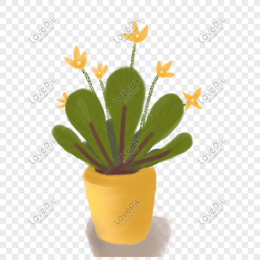 cartoon cactus potted plant png