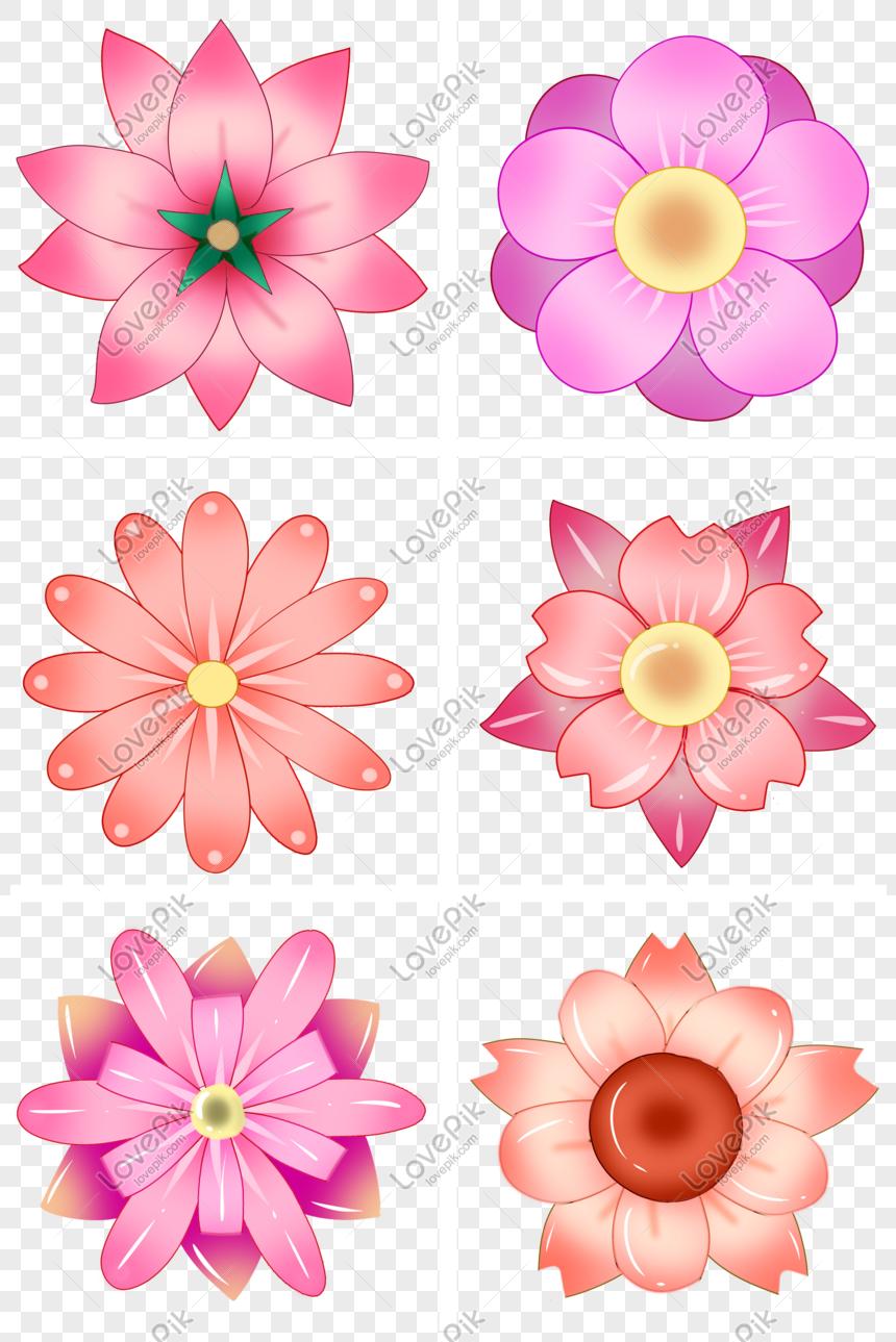 Photo de série de couleurs chaudes fleurs mignonnes_Numéro de l ...