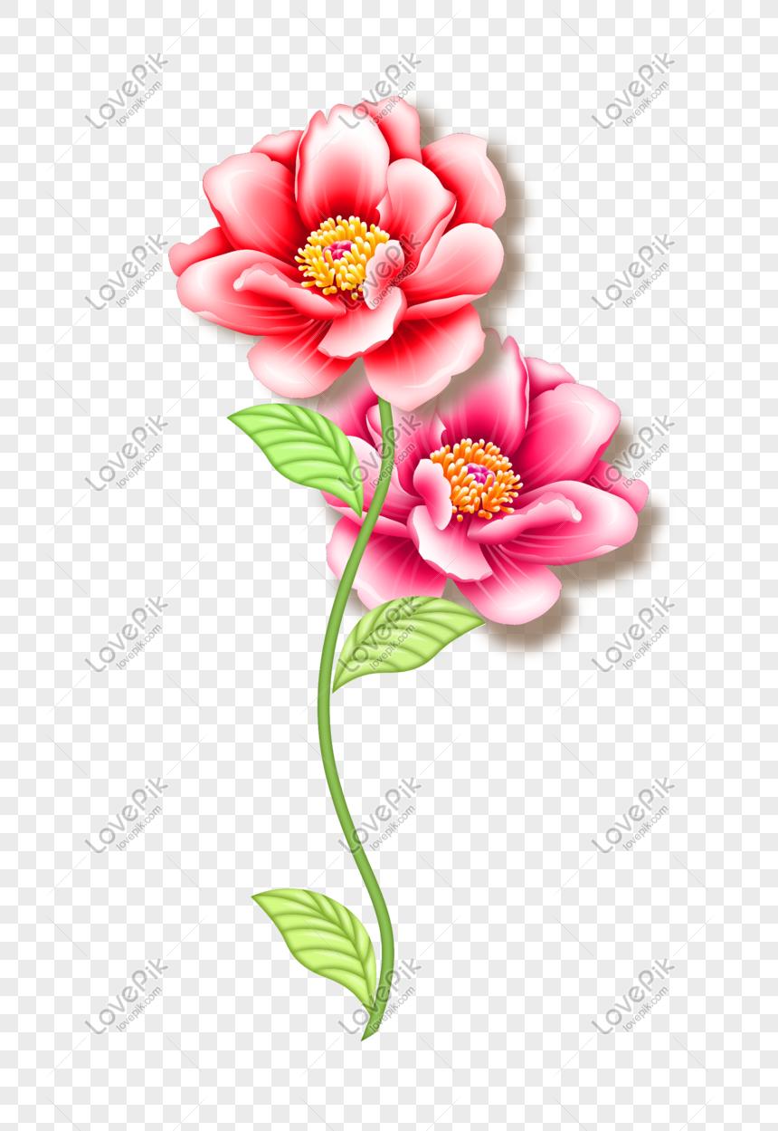Kumpulan Bunga Yang Cantik Gambar Unduh Gratis Imej