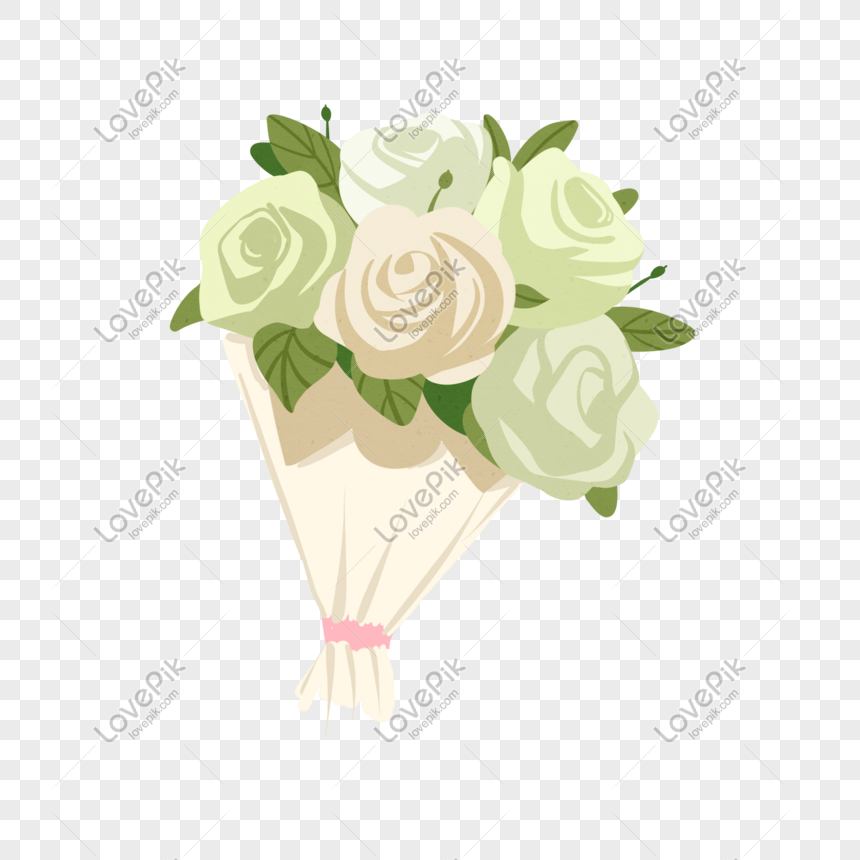 hand drawn white rose bouquet illustration png