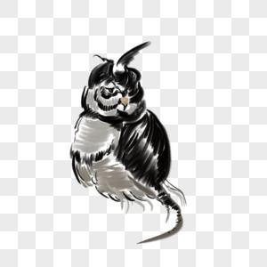 Burung Hantu Corak Hitam Dan Putih Gambar Unduh Gratis Imej