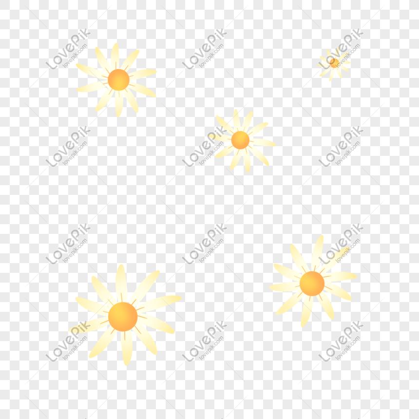 Màu Vàng Nhạt Mùa Thu Hoa Cúc Nhỏ Tươi Hình ảnh định Dạng