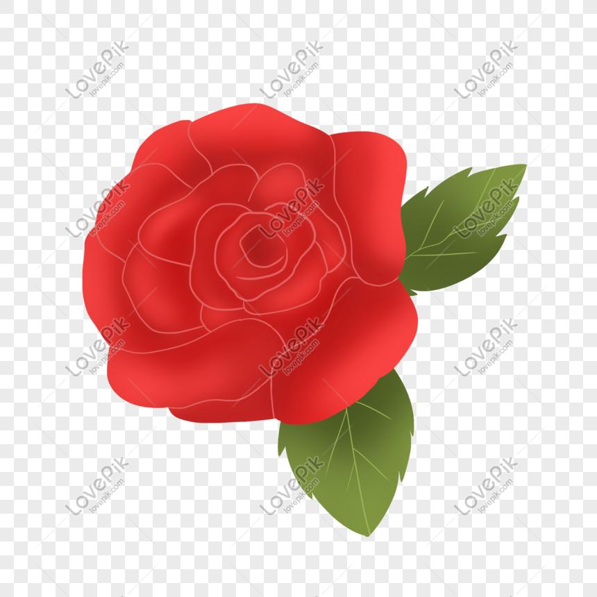 Bunga Kartun Merah Cantik Png Grafik Gambar Unduh Gratis Lovepik
