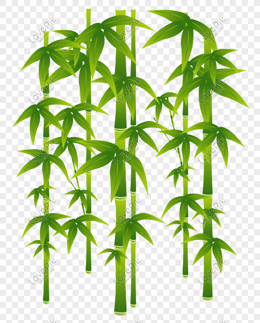 vektor bambu yang digambar tangan kartun png grafik gambar unduh gratis lovepik digambar tangan kartun png grafik