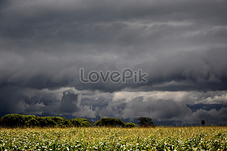 A vast field of hope photo image_picture free download.