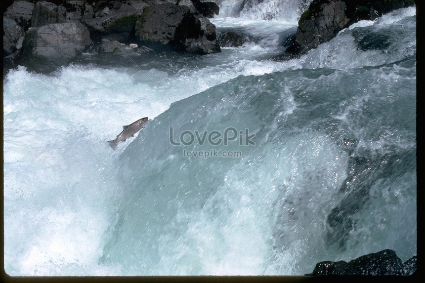 Scenery of river rocks photo image_picture free download