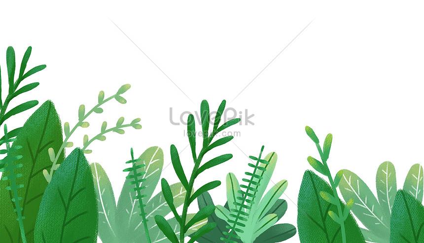 tło roślin
