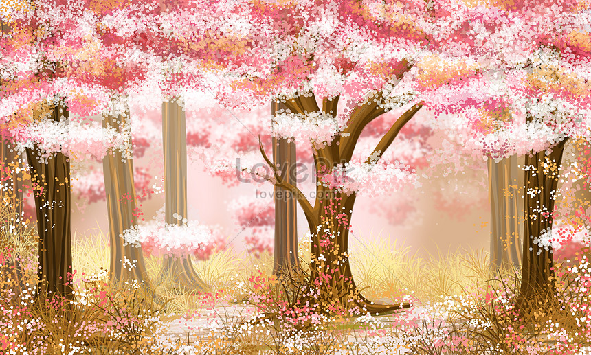 blossom in the cherry forest