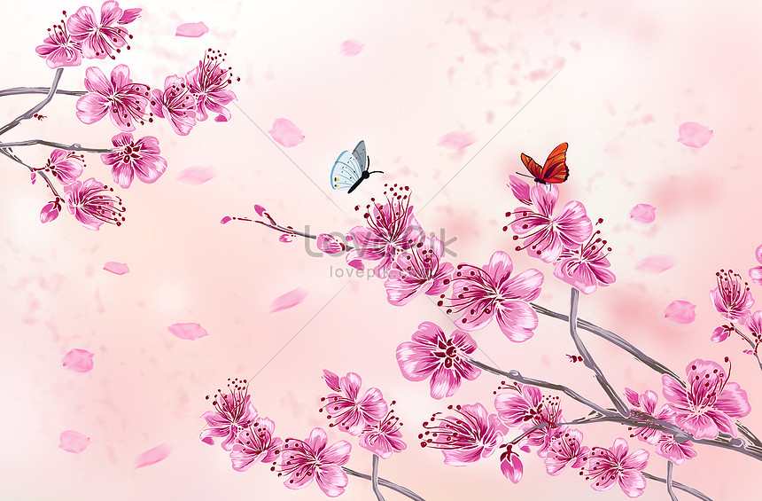 ancient wind and beautiful cherry blossoms