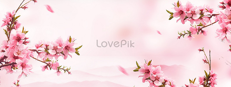 Pink flower background imagepicture 400110182lovepik free download pink flower background mightylinksfo