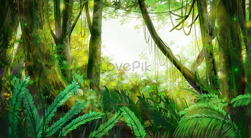 summer woods tropical jungle