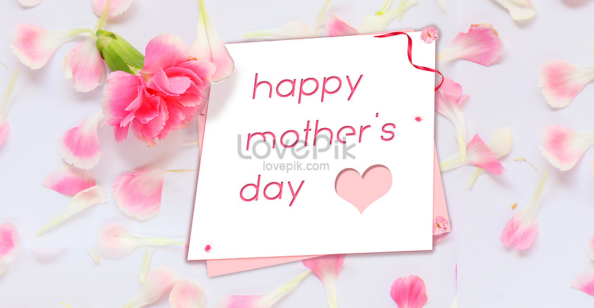 the holiday background of the beautiful flower mothers day